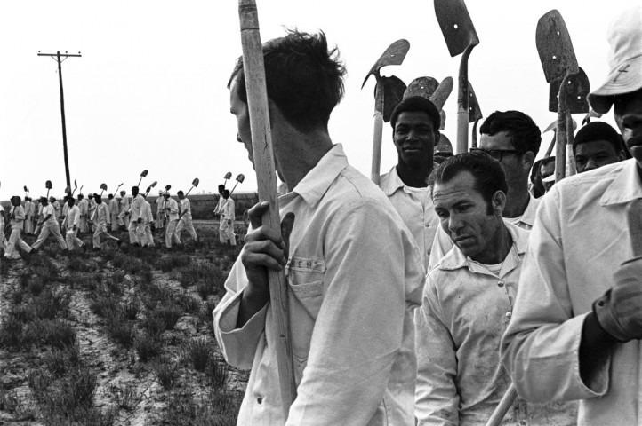 Prisoners working in the fields.