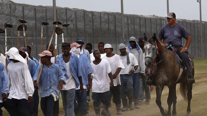 Prisoners in Texas Work March