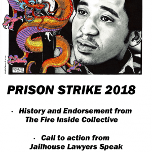 Prison Strike 2018 Fire Inside Endorsement Zine cover