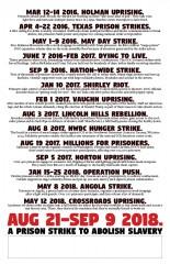 Prison Strike timeline poster