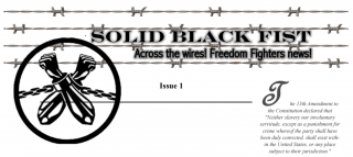 Solid Black Fist Newsletter header