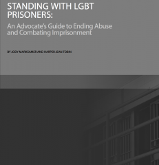 Cover of Standing with LGBT Prisoners: An Advocate's Guide to Ending Abuse and Combatting Imprisonment